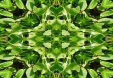 Free Green Leaves Tile Pattern Background 2 Royalty Free Stock Image - 5831166