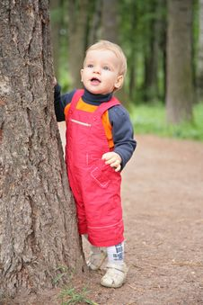 Free Child Keeps For Tree In Park Royalty Free Stock Photos - 5832178