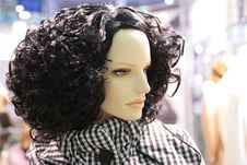 Free Head Of Woman Mannequin Royalty Free Stock Images - 5833029