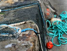 Free Drying Fishing Nets Royalty Free Stock Photography - 5834587