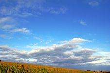 Free High Sky. Stock Photo - 5835860