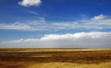 Free Golden Yellow Prairie And Blue Color Sky In Autumn Stock Image - 5836471
