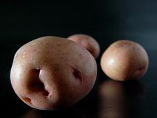 Free Red Potatoes Stock Photos - 5836753