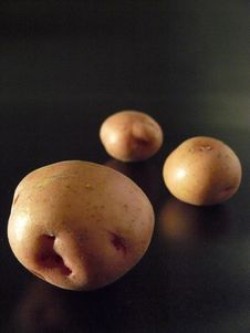 Free Red Potatoes Royalty Free Stock Photo - 5836795