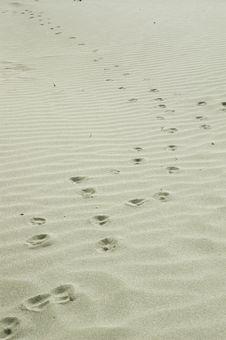 Free Sand Royalty Free Stock Photos - 5838388