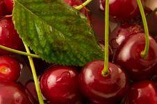 Free Cherry Stock Image - 5839741