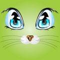 Free Cat`s Eyes Stock Photography - 5849352