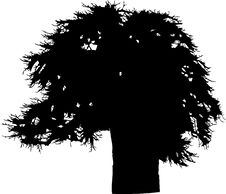 Free Isolated Tree - 38. Silhouette Stock Photography - 5840172