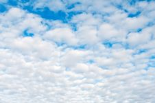 Free Cloudy Day Royalty Free Stock Photography - 5842067