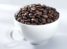 Free Coffee Bean Royalty Free Stock Photo - 5842505