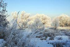 Free Winter Landscape Stock Image - 5842631
