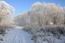 Free Winter Landscape Stock Photo - 5842660