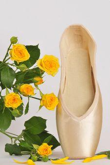 Free Close-up Ballet Pastel Pointe Royalty Free Stock Image - 5842956