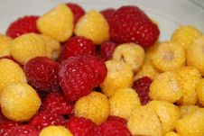 Free Red And Gold Raspberries Royalty Free Stock Photo - 5842965