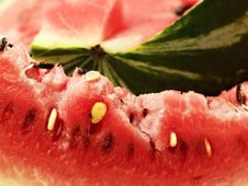 Red Melon Stock Photo