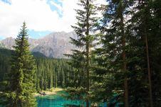 Free Forest Lake & Mountain Royalty Free Stock Photography - 5847377