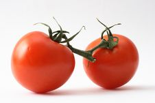 Free Tomato Royalty Free Stock Photography - 5847877
