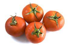 Free Tomatoes Stock Photos - 5848463