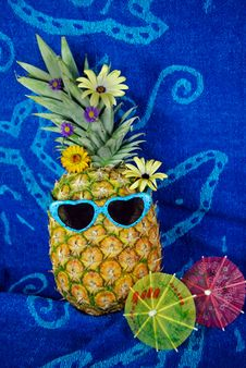 Free Summer Sensation Royalty Free Stock Photos - 5848868