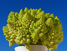 Cabbage Romanesque Royalty Free Stock Photo