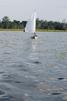 Couple Sailing Across Lake - Vertical Royalty Free Stock Images