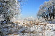 Free Winter Landscape Royalty Free Stock Photo - 5850145