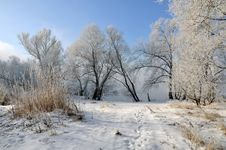 Free Winter Landscape Stock Photography - 5850242