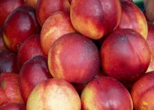 Tasty Nectarines On The Market Stock Photos