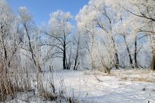 Free Winter Landscape Stock Photos - 5850273