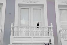 Free Balcony And Dove Royalty Free Stock Photos - 5851018