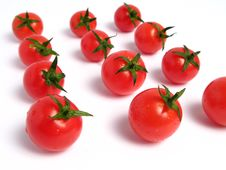Free Cherry Tomatoes Stock Photo - 5852350