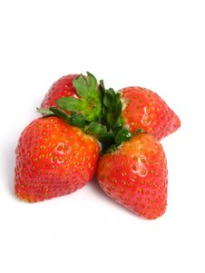 Free Strawberries Group Stock Photography - 5853052