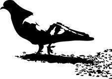 Free Pigeon Silhouette Stock Photos - 5855443