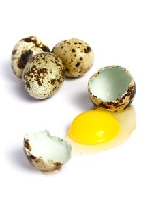 Free Quail Egg Broken Stock Photography - 5855752