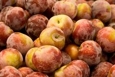 Free Red Plums Royalty Free Stock Photos - 5856588