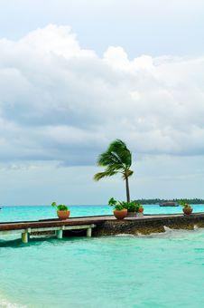 Free Maldives, Welcome To Paradise! Stock Image - 5858211