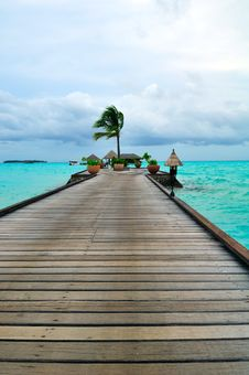 Free Maldives, Welcome To Paradise! Royalty Free Stock Photos - 5858218