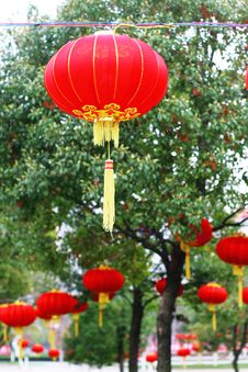 Free Red Chinese Lantern Stock Photography - 5858362