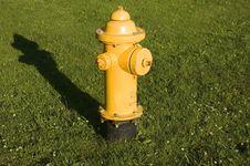 Yellow Fire Hydrant Royalty Free Stock Photo