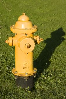 Fire Hydrant In Grass Vertical Stock Images