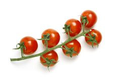 Free Tomatoes On White Royalty Free Stock Photos - 5859078
