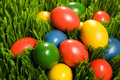 Free Easter Eggs In Grass Stock Image - 5865101