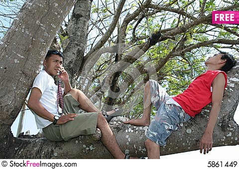 Free Two Man Enjoy On Tree Royalty Free Stock Images - 5861449