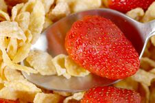 Free Strawberries And Cereal Stock Images - 5861094