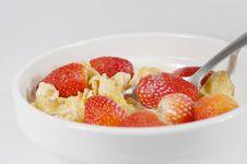 Free Breakfast Royalty Free Stock Photos - 5861118