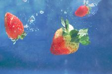 Free Strawberries Into Water Royalty Free Stock Photography - 5861137