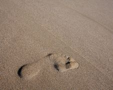 Footprint On Beach Royalty Free Stock Image