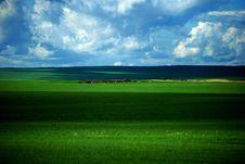 Free Hulunbuir Prairie Royalty Free Stock Image - 5863396