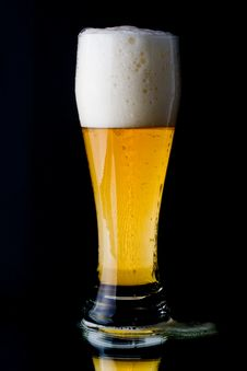 Free Fresh Foamy Beer Royalty Free Stock Photos - 5864328