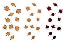 Wood Autumn Leaves Isolated On White Royalty Free Stock Photo